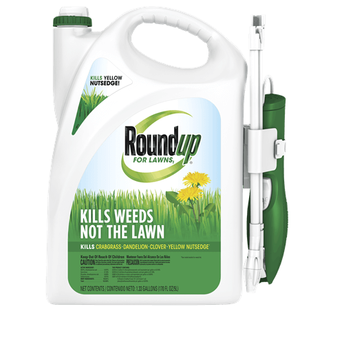 Roundup Ready for Lawns