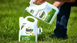 Roundup for lawns refill