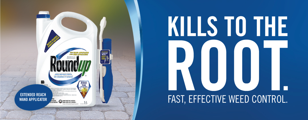 Kills to the root homepage banner with product
