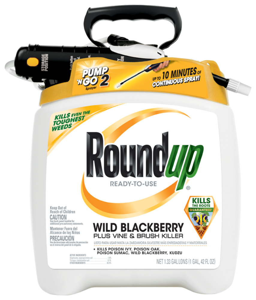 Roundup Ready To Use Wild Blackberry Plus Vine Brush Killer In The