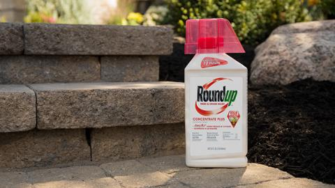 Roundup® Weed & Grass Killer Concentrate sitting on a patio.