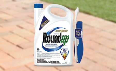 Roundup Ready-to-spray