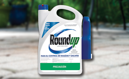 Roundup Mexico Ready-to-Use Spray