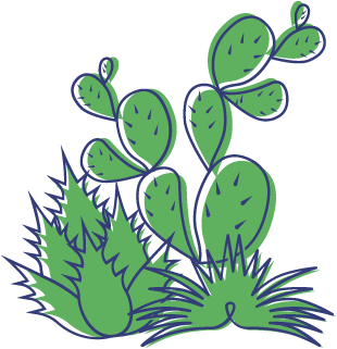 Xeric Plants Illustration