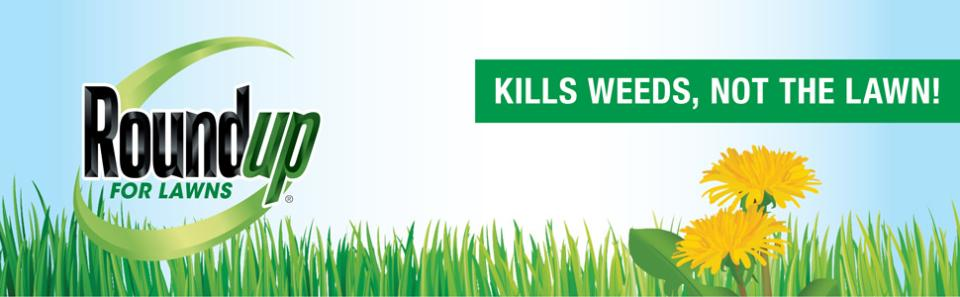 Roundup® For Lawns