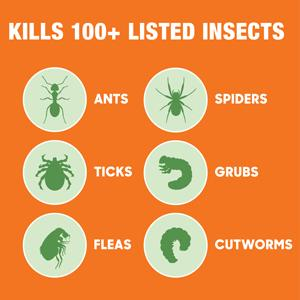 Kills 100+ Listed Insects