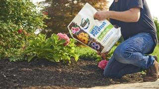 Man using Roundup® Landscape Weed Preventer for a garden.