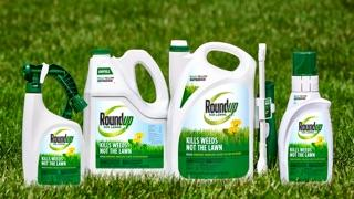 Roundup for lawn north family product shot.
