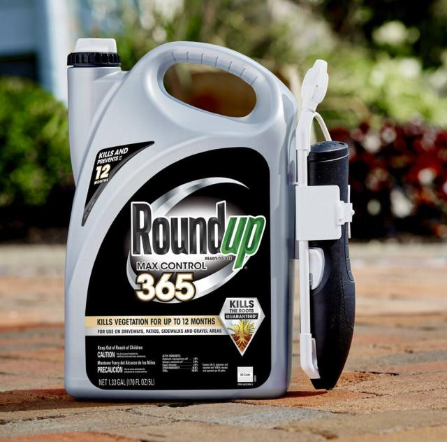 Jug of Roundup® Ready-To-Use Max Control 365 with Comfort Wand sitting on brick driveway