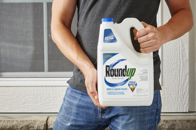 1. Roundup Weed and Grass Killer held in hands