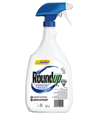 Roundup Ready to Use Grass and Weed Control 709mL