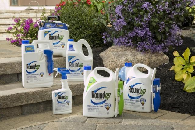 Roundup® Ready-To-Use Weed & Grass Killer III Trigger Family Shot