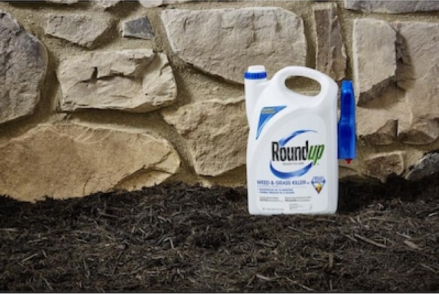 Roundup® Ready-To-Use Weed & Grass Killer III Trigger on Ground