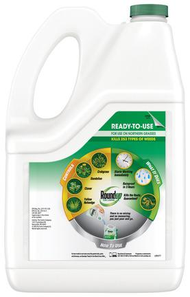 1. RoundUp ready to Use Back Shot