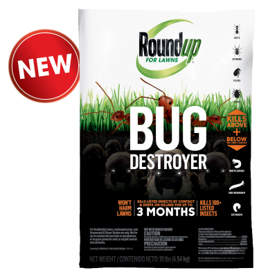 Roundup® For Lawns Bug Destroyer