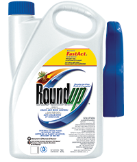 Roundup® Ready to Use Grass and Weed Control 2L